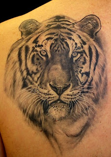 3d tiger tattoo pictures