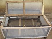 Quail Bird Cage-takes up to 100 Birds