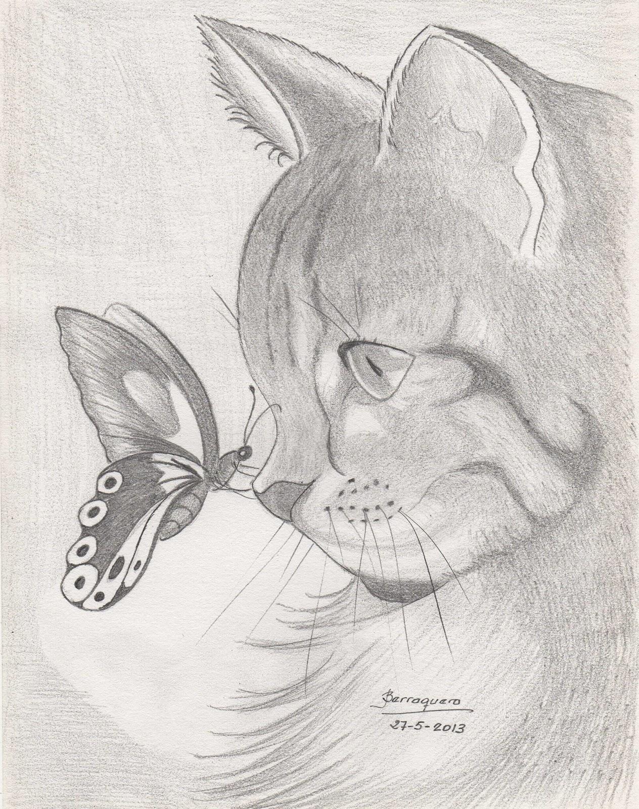 Gatos tiernos para dibujar a lapiz - Imagui
