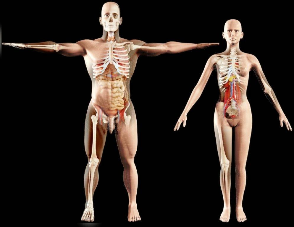 Pontos e massagem de aumento em uma potência