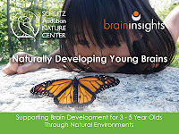 Nature Brain Packet