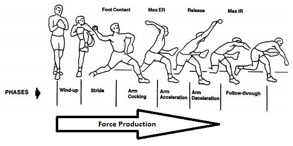 Baseball Pitching Biomechanics