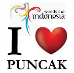 Puncak Hotels Links