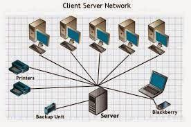 Fungsi Jaringan Peer To Peer dan Client Server