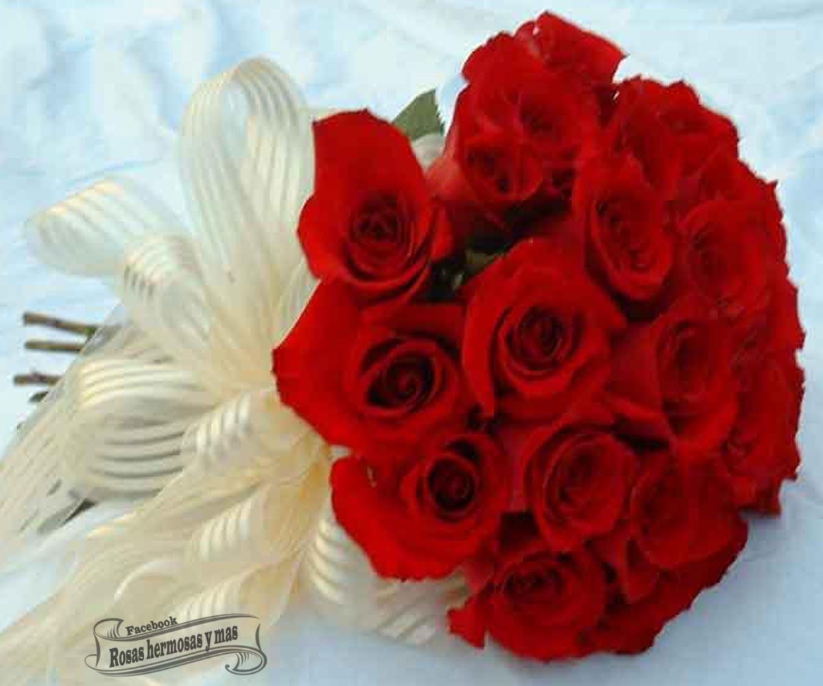 Ramos de flores bellas related keywords ramos de flores - Rosas rosas hermosas ...
