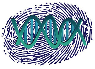 DNA versus Fingerprint Collection