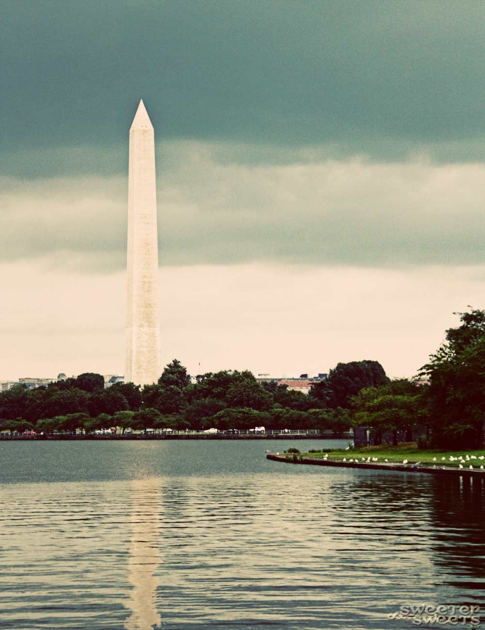Washington, D.C. by Tricia @ SweeterThanSweets