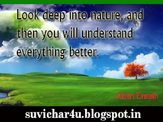 Look deep into nature, and then you will understand everything better.