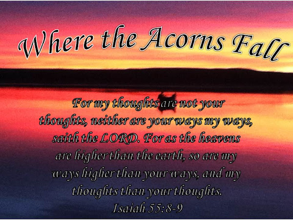Where The Acorns Fall