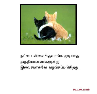 tamil essays in tamil language aids