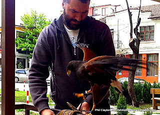 Veliko Turnovo, Bulgaria Bulgarian association for preservation of raptors