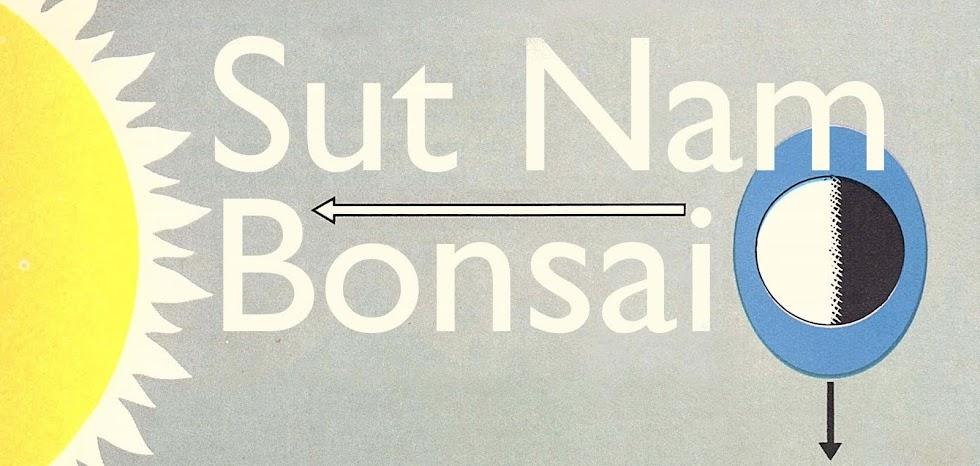 Sut Nam Bonsai