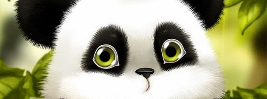 Photo couverture facebook panda