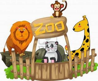 http://www.zoomadrid.com/animales#Birds