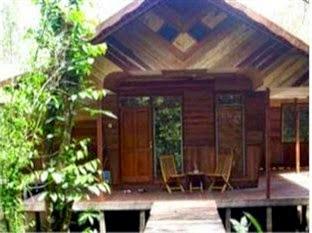 Harga Hotel Pangkalan Bun - Rimba Orangutan Eco Lodge