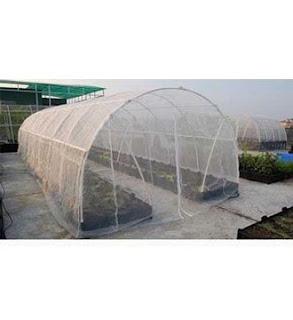greenhouse anti-bird netting