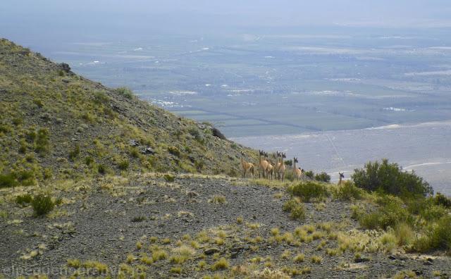 Ascenso Sierras Azules,trekking san juan