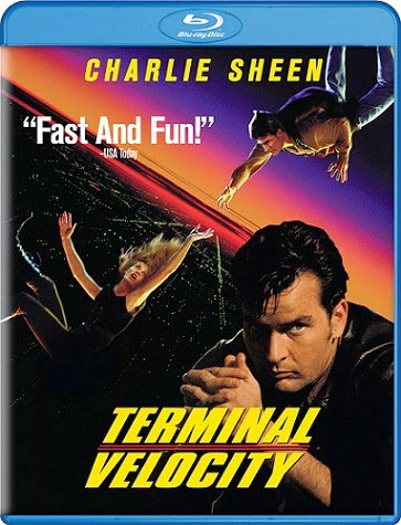 Terminal Velocity 1994 Hindi Dubbed Dual BRRip 480p 300mb