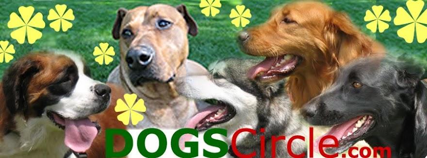 www.DogsCircle.com
