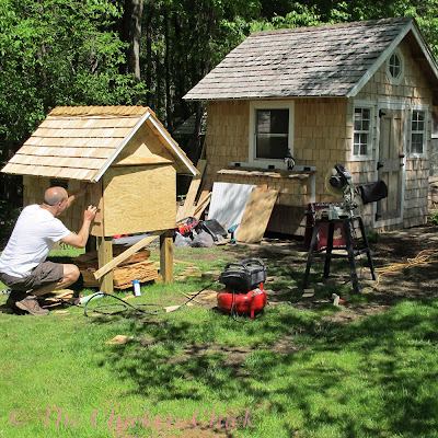 5/12/12 The coop walls are shingled & circular saw is back in business with a new power cord.
