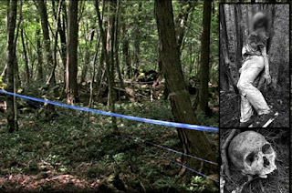 Aokigahara Forest; The Creepy Suicide Forest