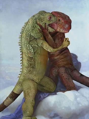 imágenes de reptiles