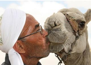 Manfaat berciuman