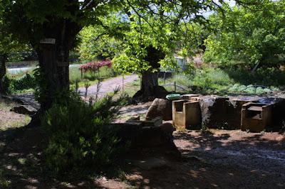 fosas septicas camping