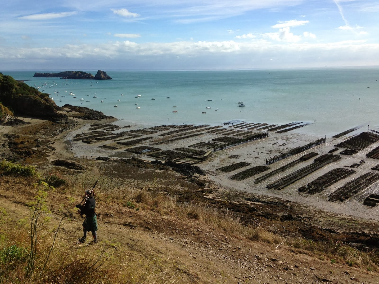Lone piper above oyster beds at low tide, Cancale, Bretagne