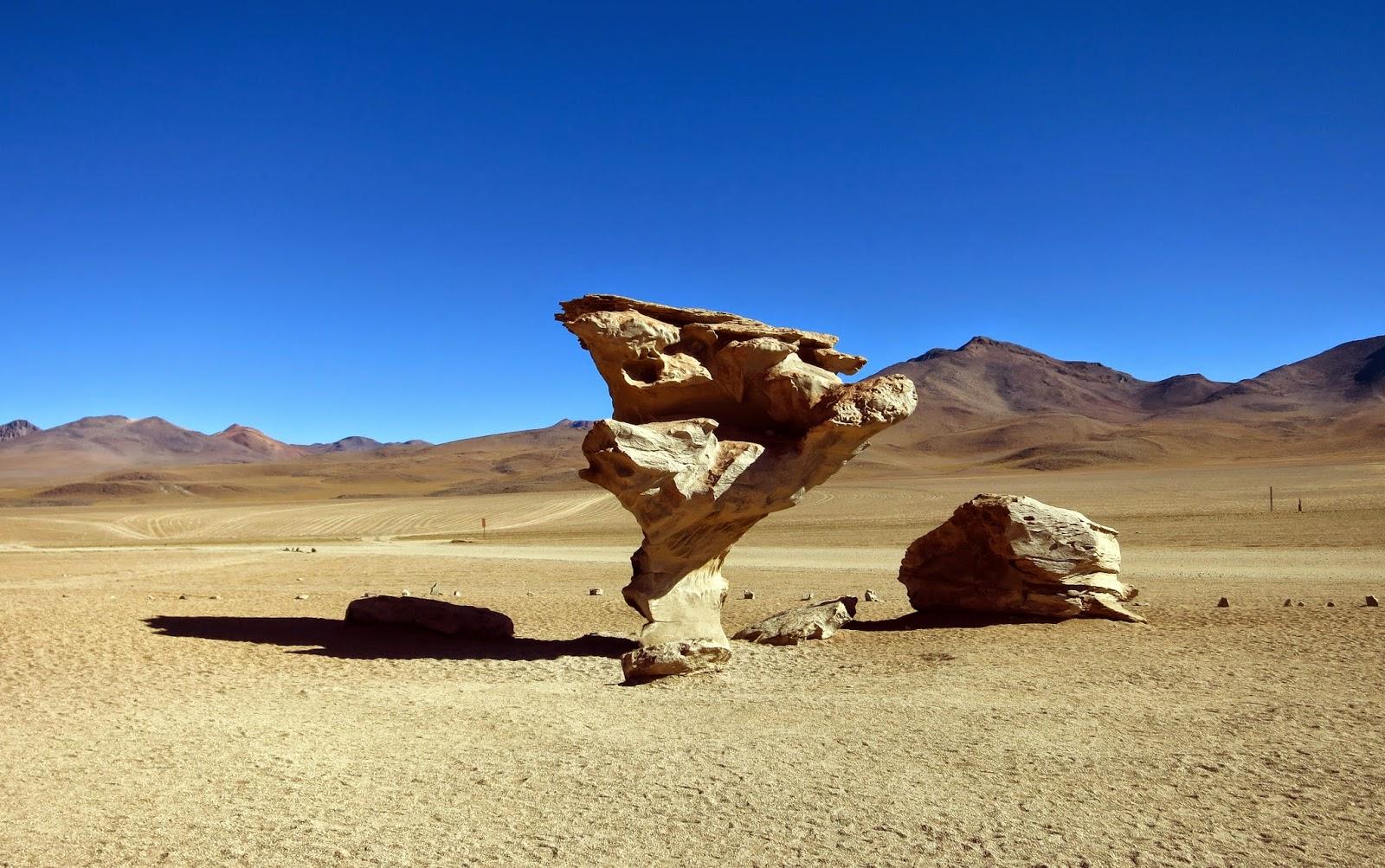 Árbol de piedra en el altiplano boliviano.