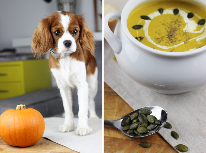 Autumn Winter / Fall Pumpkin Soup and White Bloomer Bread