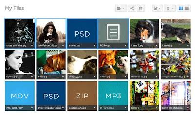 shared.com archivos