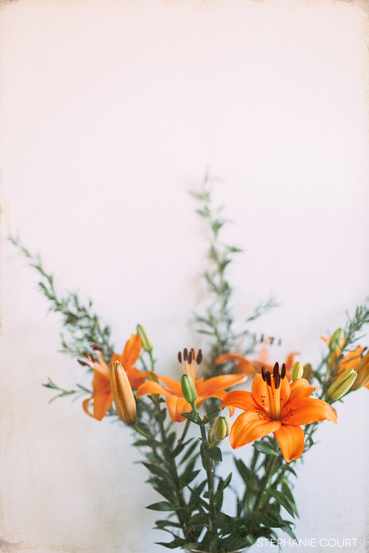 asiatic lilies with rosemary