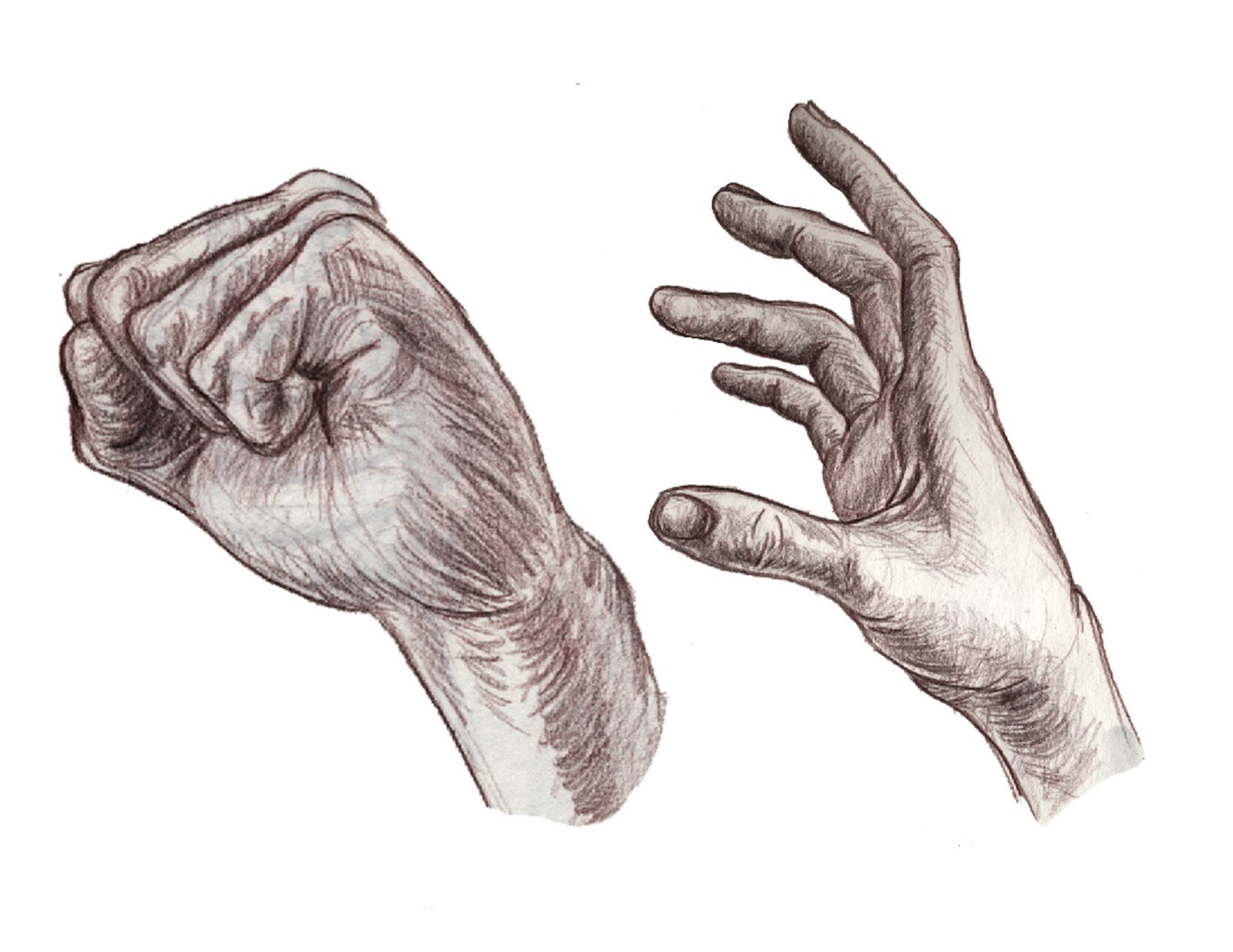 how to draw a realistic open hand
