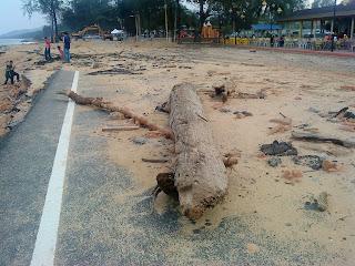 kayu balak di jalan