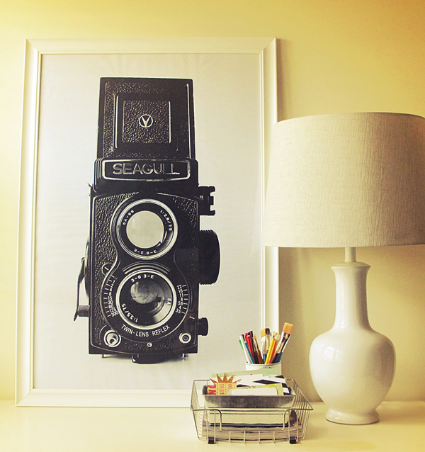 cool, cheap vintage camera art