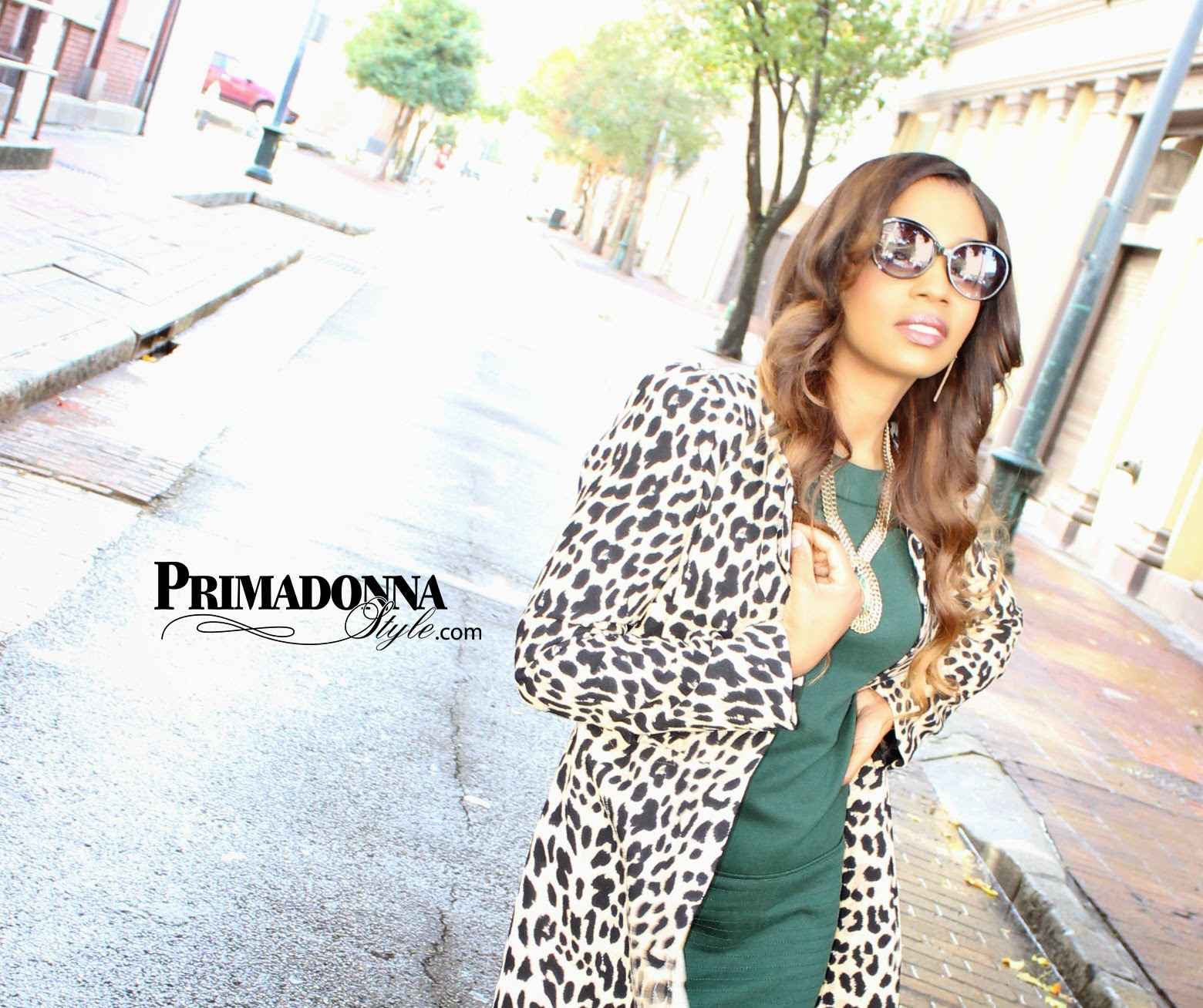 sheinside leopard animal print coat jessica simpson green ponte shift dress rampage namure black gold cap toe pumps