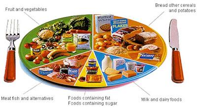 Pengambilan Makanan Seharian Diet Seimbang