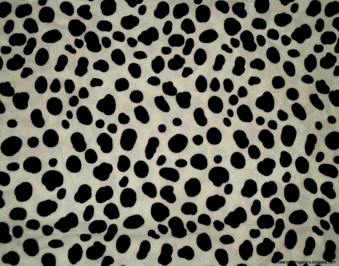 Black and White Animal Print Fabric