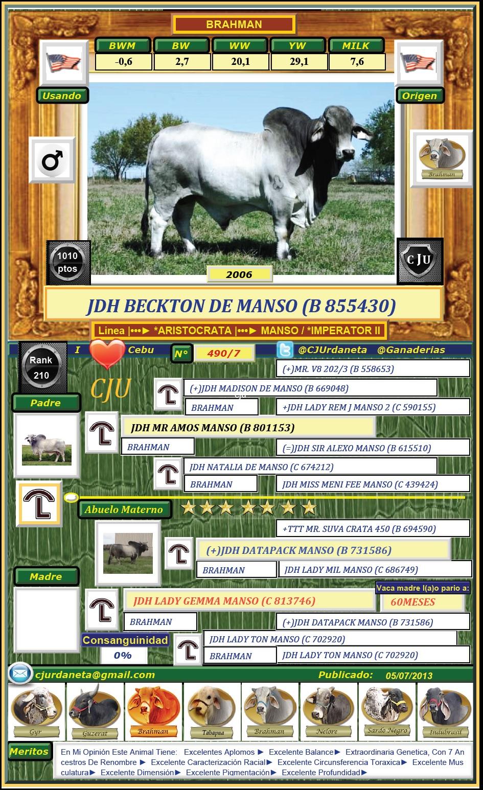 JDH BECKTON DE MANSO (B 855430)