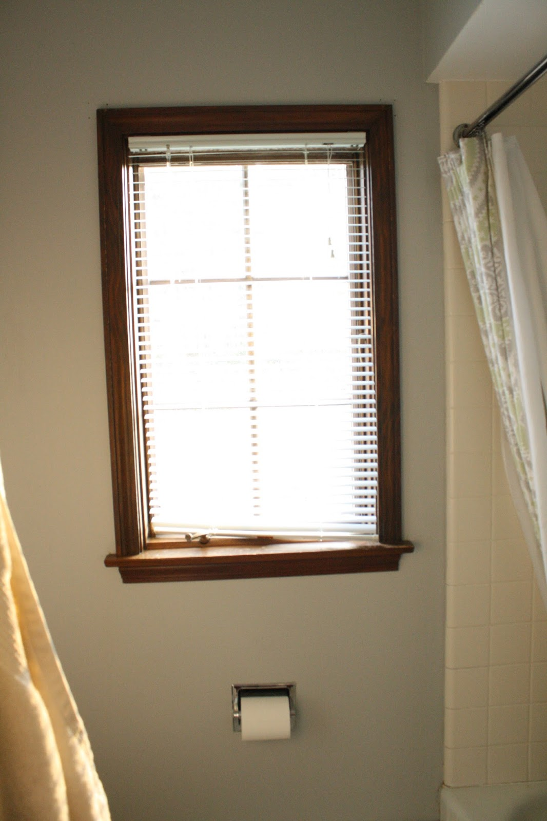 This South Facing Window Lets A Lot Of Light Into Our Bathroom, But Also  Needs To Be Dressed Up With A Valance Of Some Sort. And While We Can See  It, ...