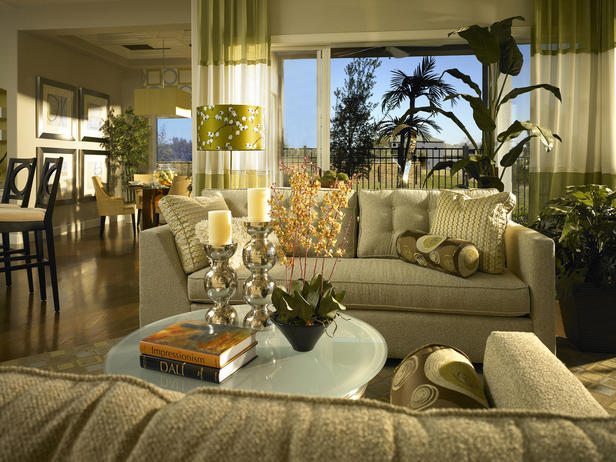 The Best Window Blinds For Living Room Decorate Window Treatments Design Ideas 2011 By HGTV Designers