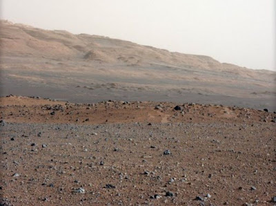 China prepares to grow vegetables on Mars