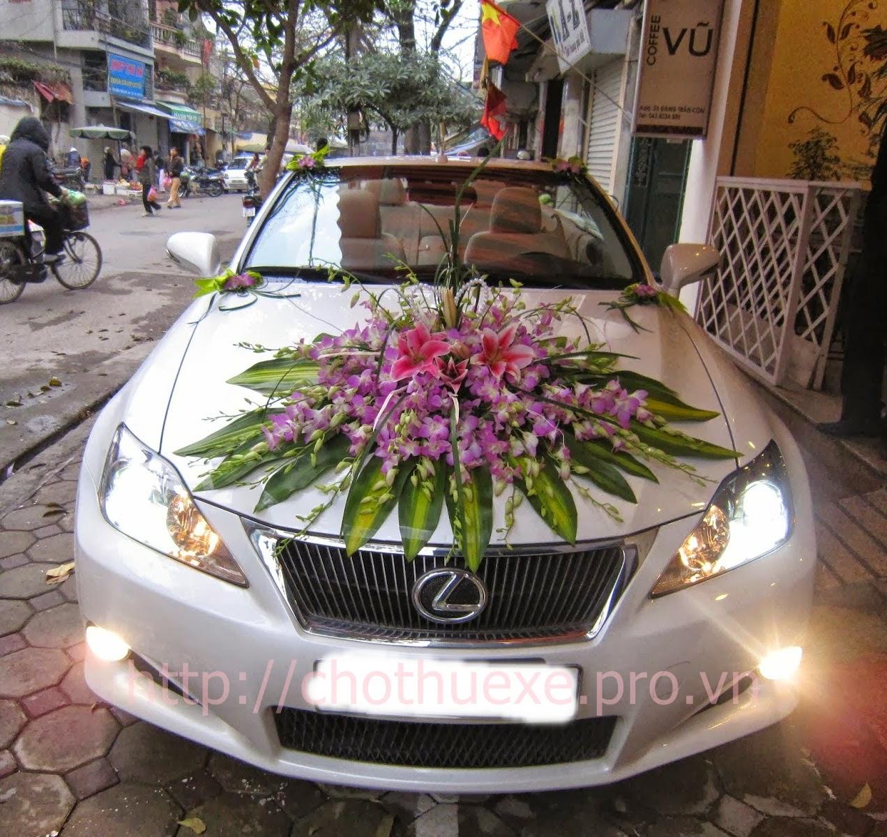 Cho thuê xe cưới mui trần Lexus IS 250 - xe cưới màu trắng