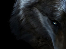WOLF HOWL HAS HIS OWN BLOG!