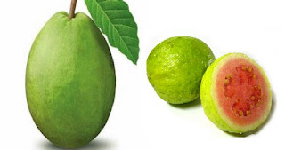 Manfaat atau khasiat jambu biji dan kandungan vitamin di dalamnya