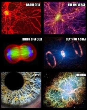HUMAN & UNIVERS