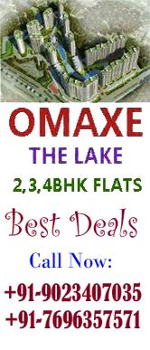 OMAXE The Lake Flat