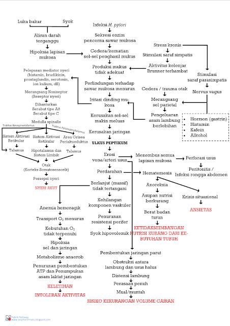 Perjalanan Penyakit Ulkus Peptikum Hingga Diagnosis Keperawatan