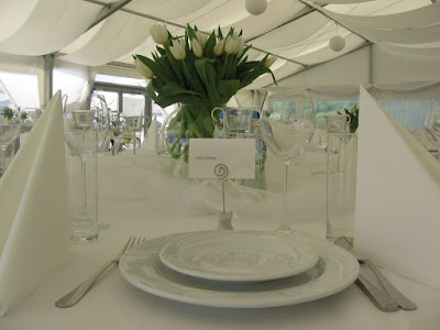 Dekoracja weselna w namiocie w Binowie
